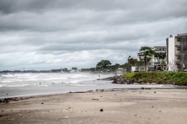 Nejznámější pláž. Surfovací... fouká