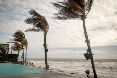 Toto je surfařská pláž s větrem