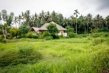 Vila v rýžovém poli
